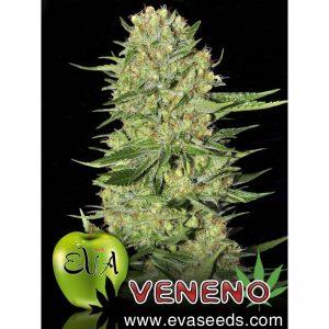veneno-Growcenter