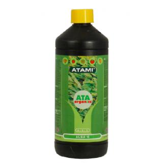 Alga-C Atami