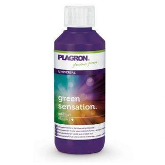 plagron green sensation 100ml ce fertilizante floracion bloom nutriente grow shop maipu