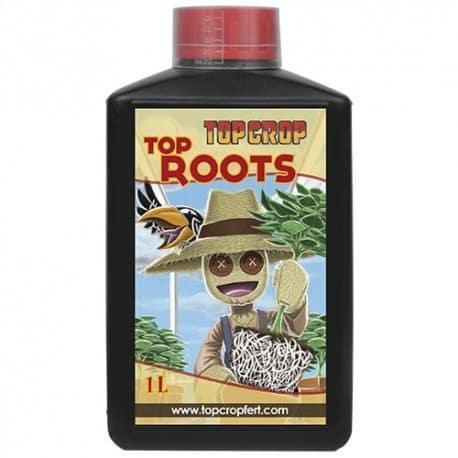 Top Roots