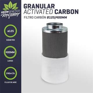 Filtro De Carbon 125x400